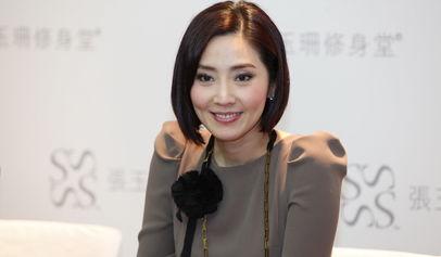 么样,张玉珊有儿子吗,向华胜和张玉珊离婚了吗图片